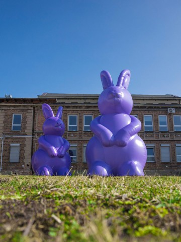 Inflatable rabbits - unusual individual order