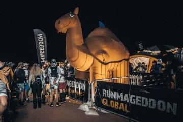Inflatable camel in the Sahara desert